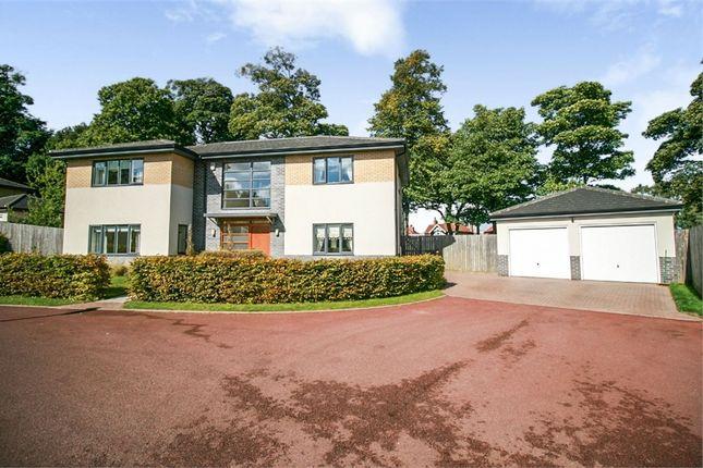 Thumbnail Detached house for sale in Black Scotch Close, Mansfield, Nottinghamshire