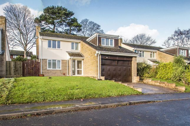 Thumbnail Detached house for sale in Jarmyns, Bishops Hull, Taunton