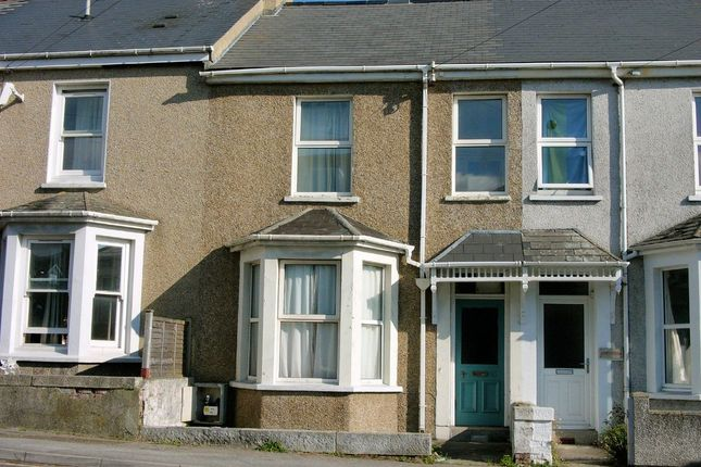 Thumbnail Property to rent in Dracaena Avenue, Falmouth