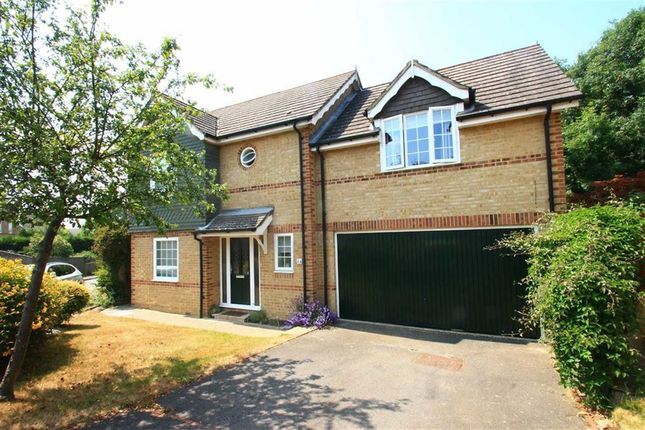 Thumbnail Detached house for sale in Darwell Close, St Leonards-On-Sea, East Sussex
