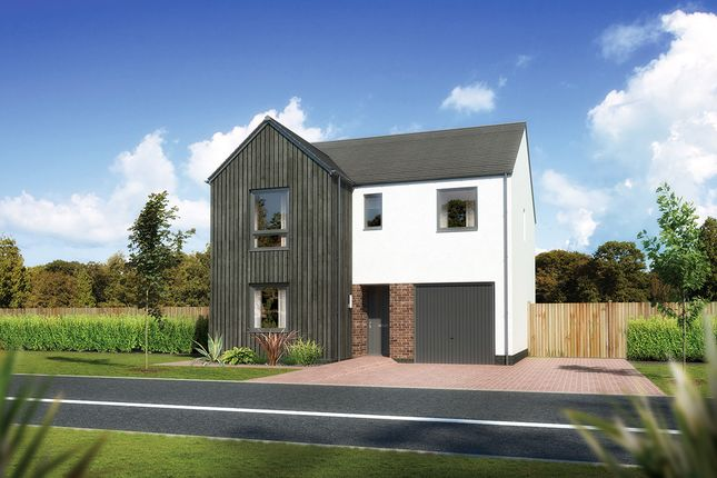 "Thumbnail Detached house for sale in ""Glenmore"" at Carron Den Road, Stonehaven"