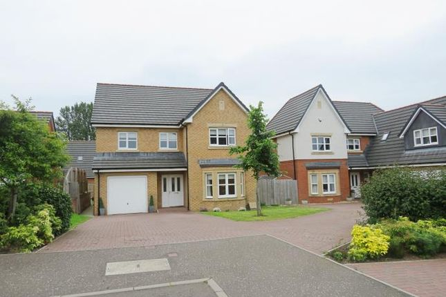 Thumbnail Detached house to rent in Calderpark Road, Uddingston, Glasgow