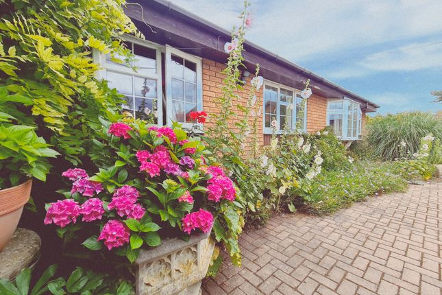 Thumbnail Semi-detached bungalow for sale in Greenbank Terrace, Ringstead, Kettering