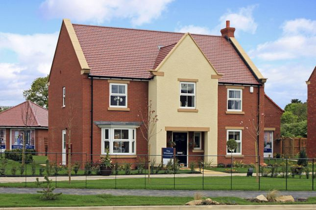 """Thumbnail Detached house for sale in """"Winstone"""" at Ellerbeck Avenue, Nunthorpe, Middlesbrough"""