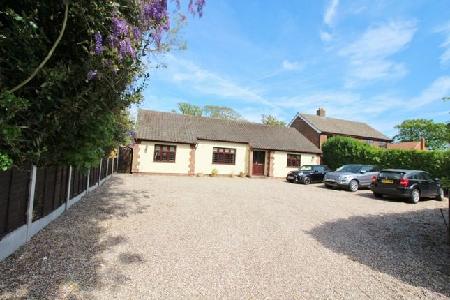 Thumbnail Detached bungalow for sale in Main Road, Rollesby