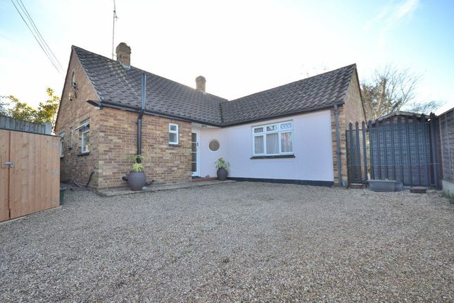 Thumbnail Detached house to rent in St Johns Green, Writtle, Writtle