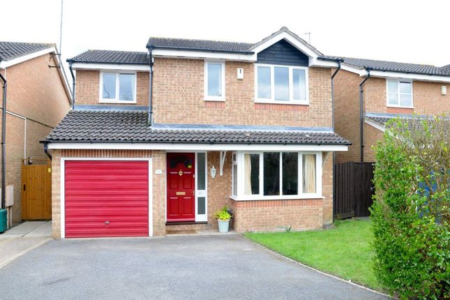 Thumbnail Property to rent in Cherry Blossom Close, Northampton