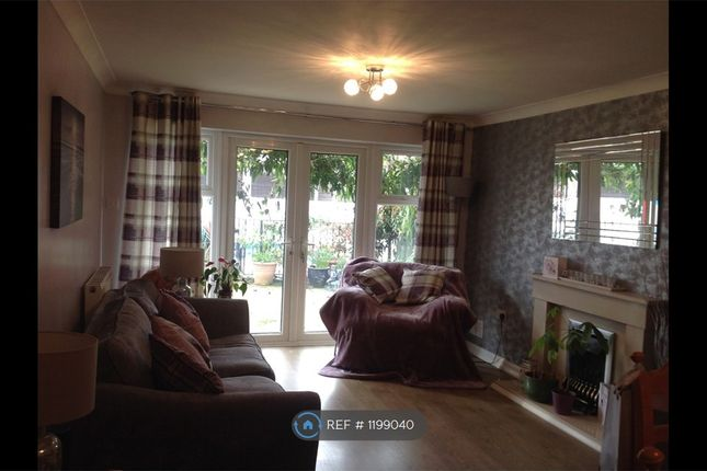 Thumbnail Bungalow to rent in Llanedeyrn Road, Cardiff