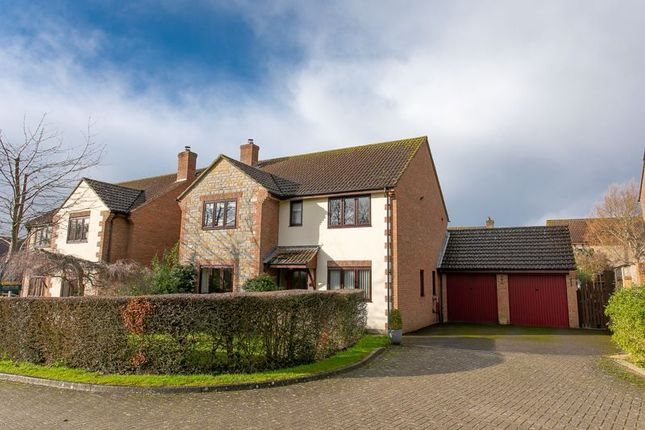 Thumbnail Detached house for sale in Abbey Fields, Curry Rivel, Langport