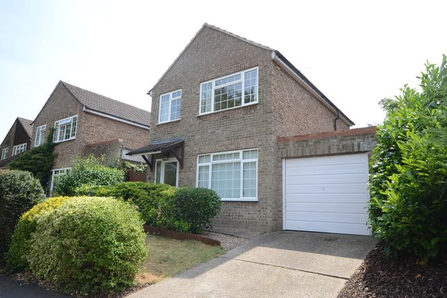 Thumbnail Detached house to rent in Field Lane, Frimley, Camberley