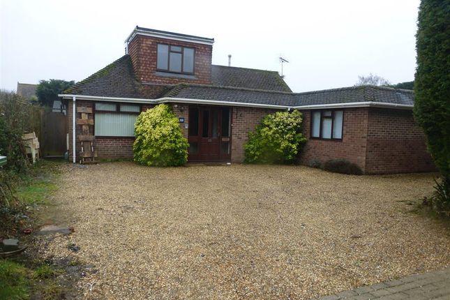 Thumbnail Bungalow to rent in Downview Road, Barnham, Bognor Regis