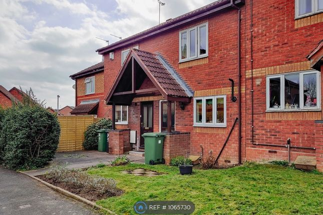 Thumbnail Terraced house to rent in Haines Avenue, Worcester