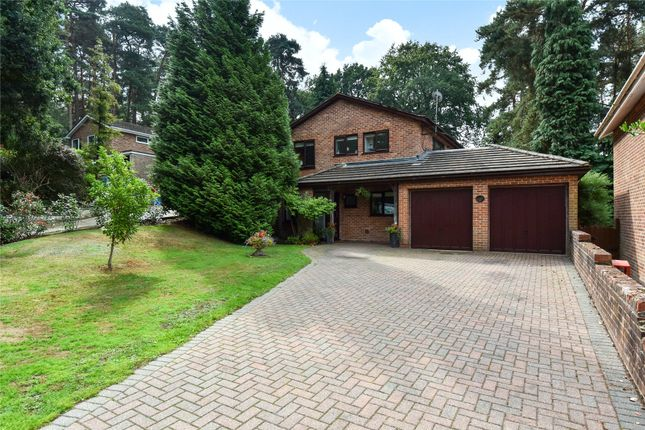 Thumbnail Detached house for sale in Cairn Close, Camberley, Surrey