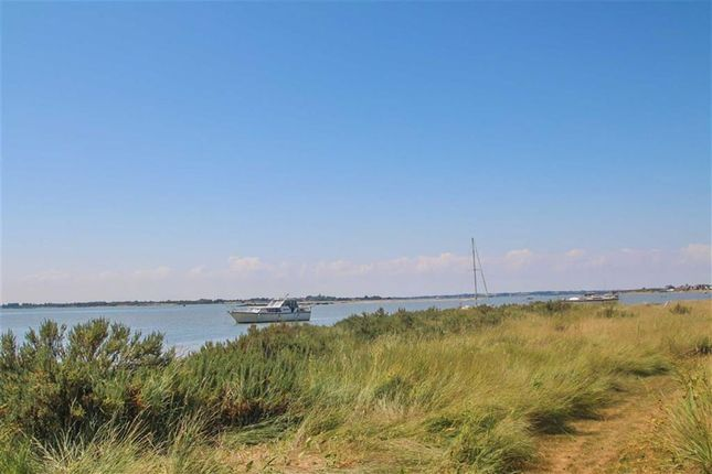 Thumbnail Detached bungalow for sale in Colne View, St. Osyth, Clacton-On-Sea