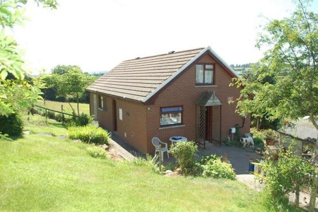 Thumbnail Bungalow to rent in Pencarreg, Llanybydder