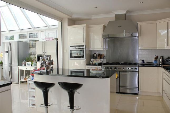 Thumbnail Detached house to rent in Aylmer Road, East Finchley