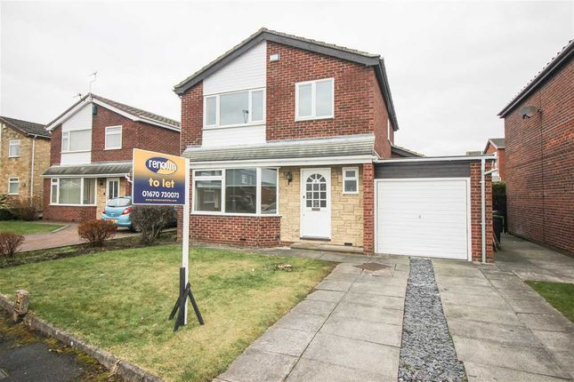 Thumbnail Detached house to rent in The Crest, Bedlington