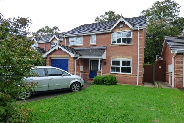 Thumbnail Detached house to rent in Briton Lodge Close, Moira