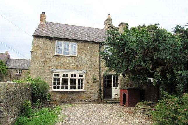 Thumbnail Semi-detached house to rent in Allendale, Northumberland