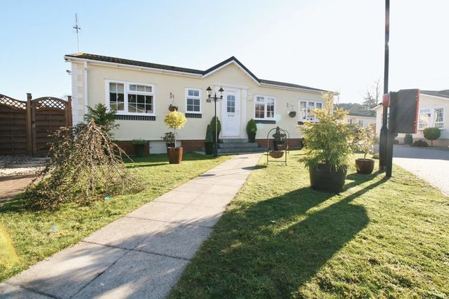 Thumbnail Detached house for sale in Flag Hill, Great Bentley, Colchester