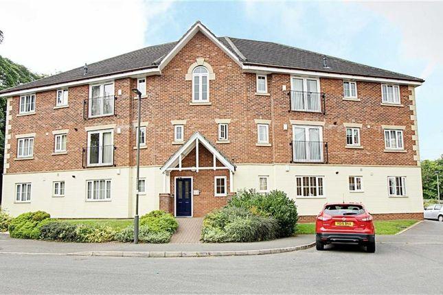 Thumbnail Flat to rent in St Matthews Close, Renishaw, Sheffield