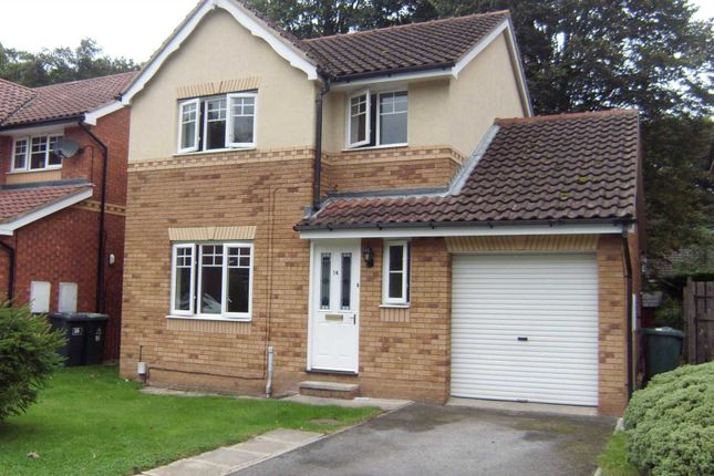 Thumbnail Detached house to rent in Millwater Avenue, Dewsbury