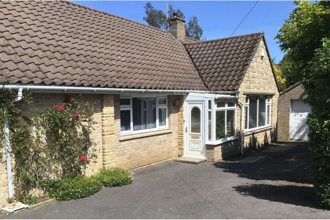 Thumbnail Detached bungalow for sale in Culverhayes, Beaminster