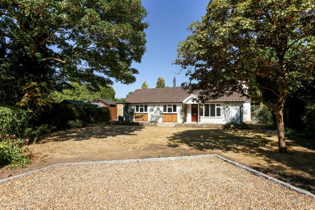 Thumbnail Bungalow to rent in The Green, Datchet, Slough