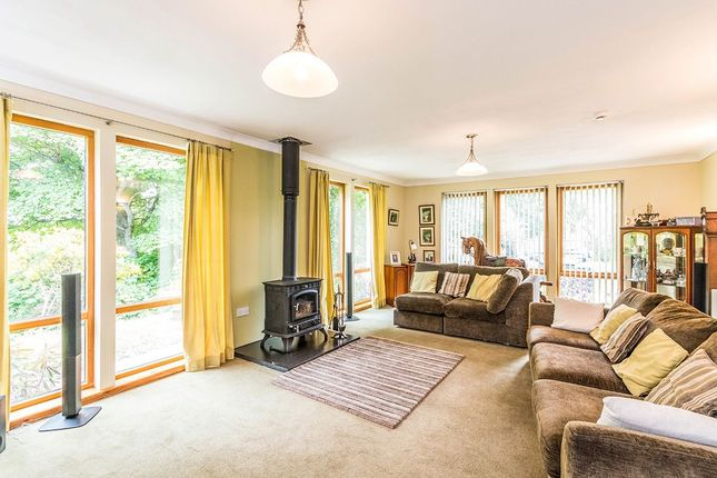 Thumbnail Bungalow for sale in Beech Brae, Glenrinnes, Dufftown