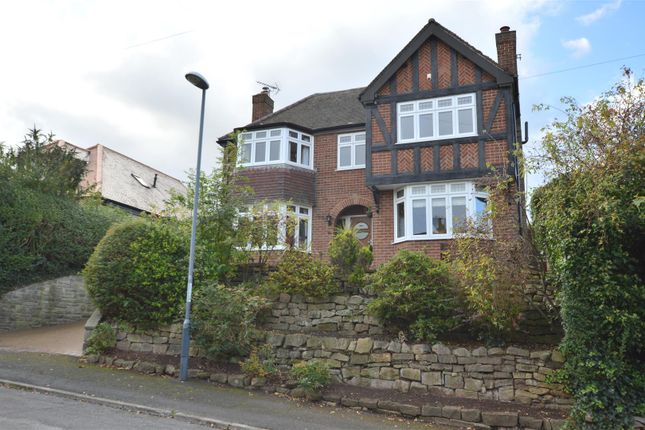 Thumbnail Detached house for sale in Darley Park Road, Darley Abbey, Derby