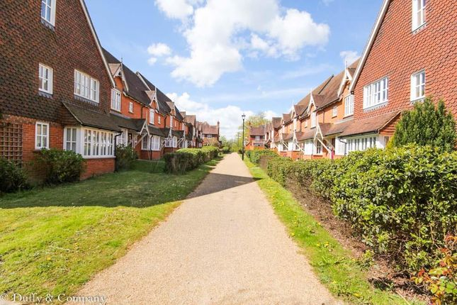 Thumbnail Terraced house to rent in Belvedere Walk, Bolnore Village, Haywards Heath