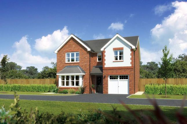 """Thumbnail Detached house for sale in """"Hampsfield"""" at Ffordd Eldon, Sychdyn, Mold"""