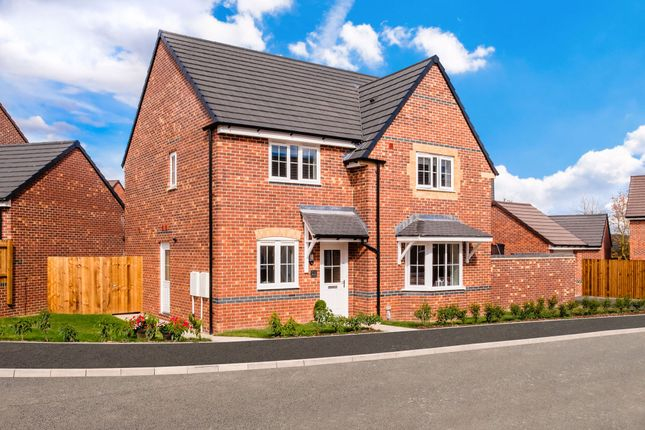 """Thumbnail Detached house for sale in """"Cambridge"""" at Hampton Dene Road, Hereford"""