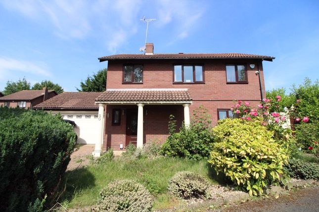 Thumbnail Detached house to rent in Stoneleigh Close, Luton