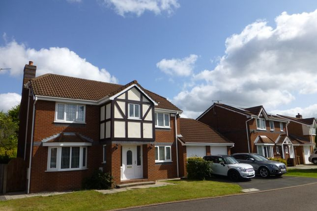Thumbnail Detached house to rent in Whitebeam Close, Penwortham, Preston