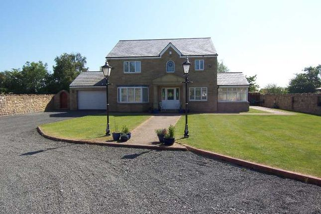 Thumbnail Detached house for sale in Longhoughton, North End, Little Garth