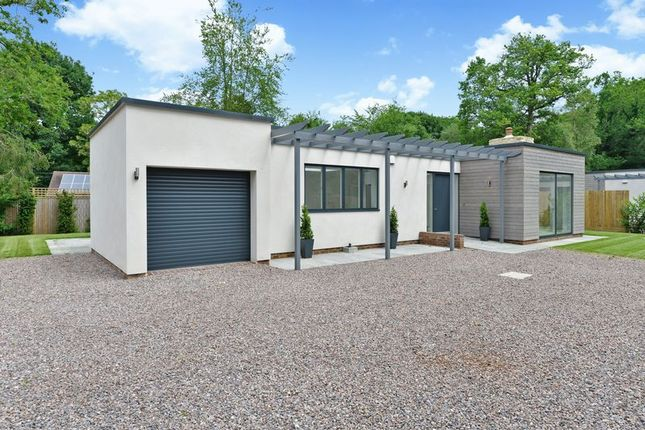 Thumbnail Detached bungalow for sale in Courtlands, The Drive, Ifold