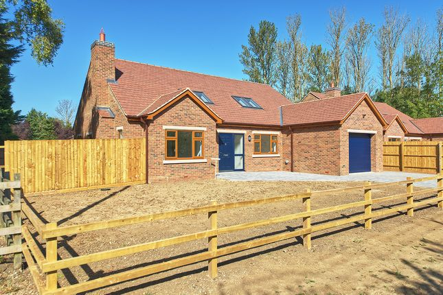 Thumbnail Detached bungalow for sale in Hargrave, Wellingborough, Northamptonshire