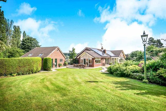 Thumbnail Detached bungalow for sale in Church Meadows, Whitchurch, Shropshire