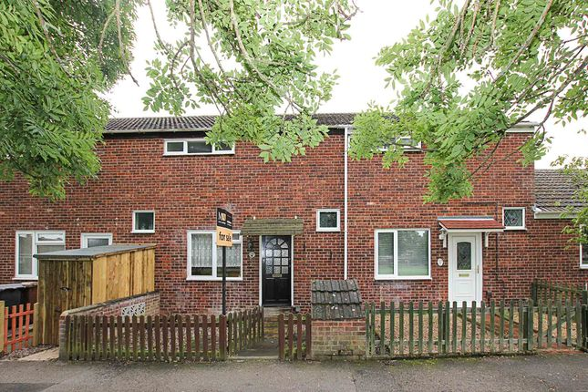 Thumbnail Terraced house to rent in Pinza Close, Newmarket
