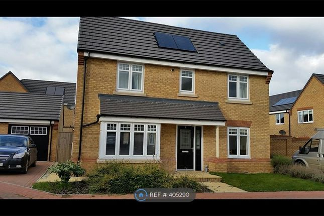 Thumbnail Detached house to rent in Holmesfield Grove, Waverley, Rotherham