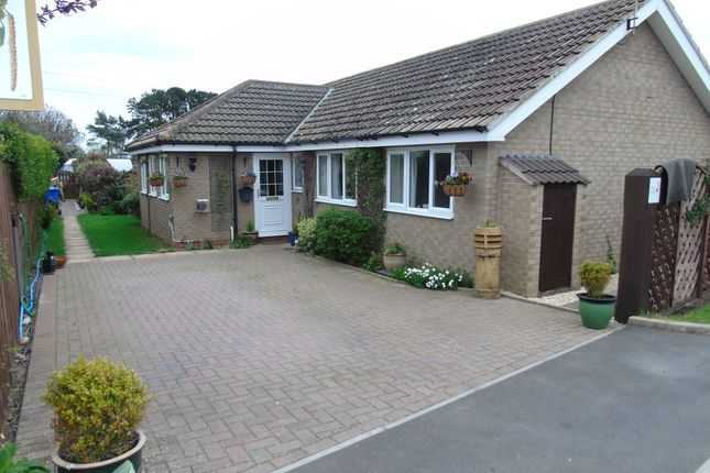 Thumbnail Bungalow for sale in Meadow Lane, Beadnell, Chathill