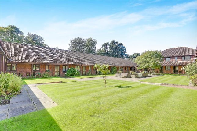 Thumbnail Bungalow to rent in London Road, East Grinstead