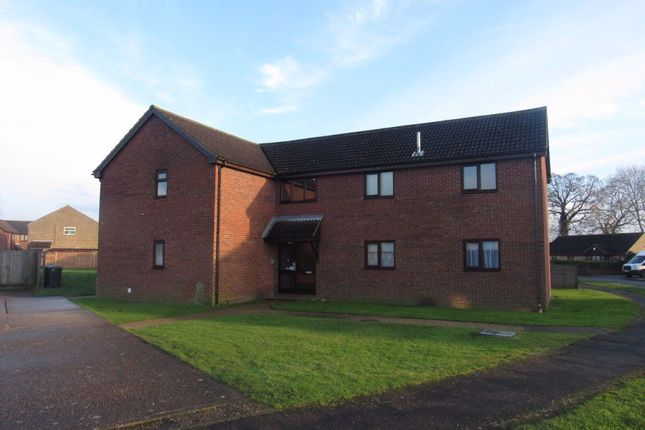 Studio to rent in Lime Tree Avenue, Wymondham NR18