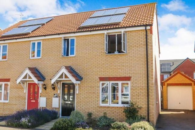 Thumbnail Semi-detached house to rent in Whitby Avenue, Eye, Peterborough