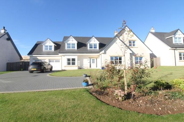 Thumbnail Detached house to rent in Newtonhill, Stonehaven