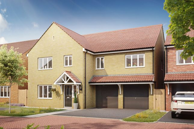 """Thumbnail Detached house for sale in """"The Compton"""" at Bellona Drive, Peterborough"""