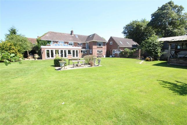 Property To Rent Shaftesbury Estate