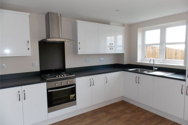 Thumbnail Flat to rent in Newton Drive, Heanor, Derbyshire
