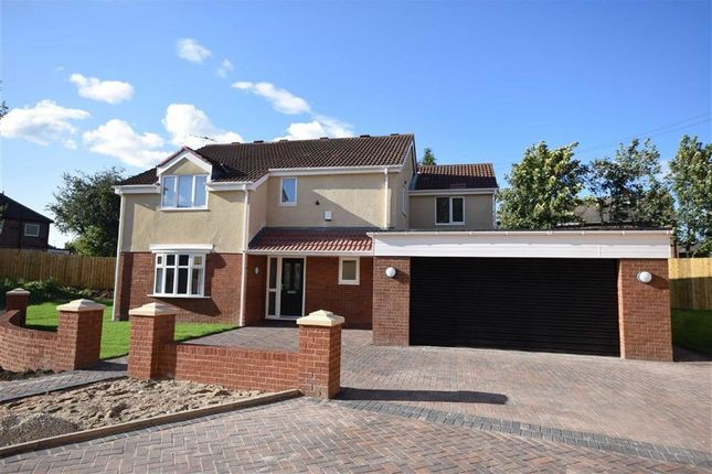 Thumbnail Detached house for sale in Hedworth Lane, Jarrow